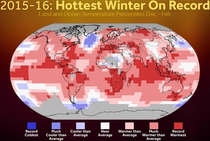میانگین دمای جهانی
