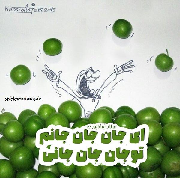 عکس گوجه سبز زیبا