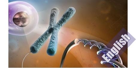 کتاب ساختار و انحرافات کروموزوم  Chromosome Structure and Aberrations