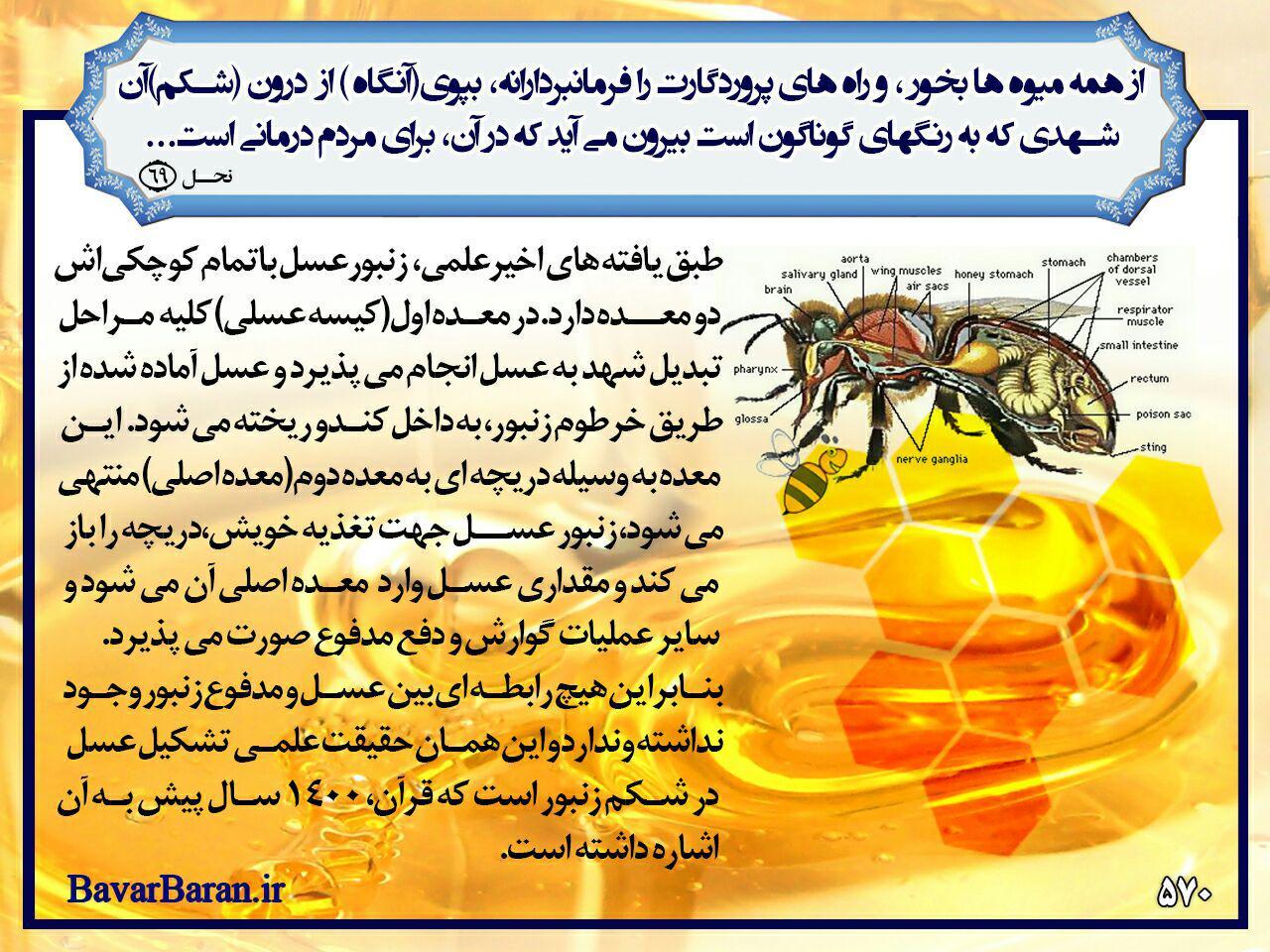 گروه+قرآنی+تلگرام