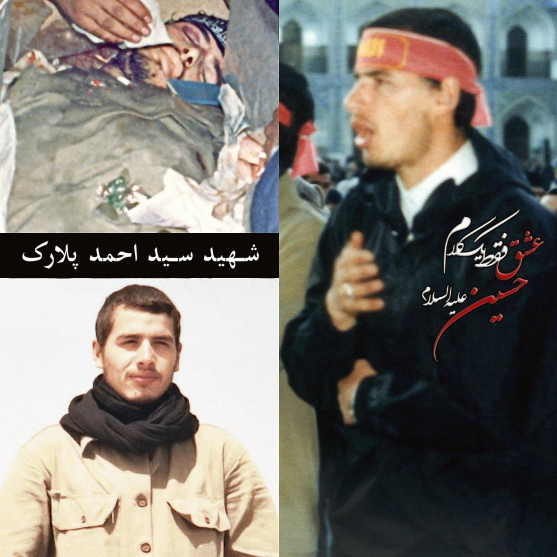 شهید سید احمد پلارک
