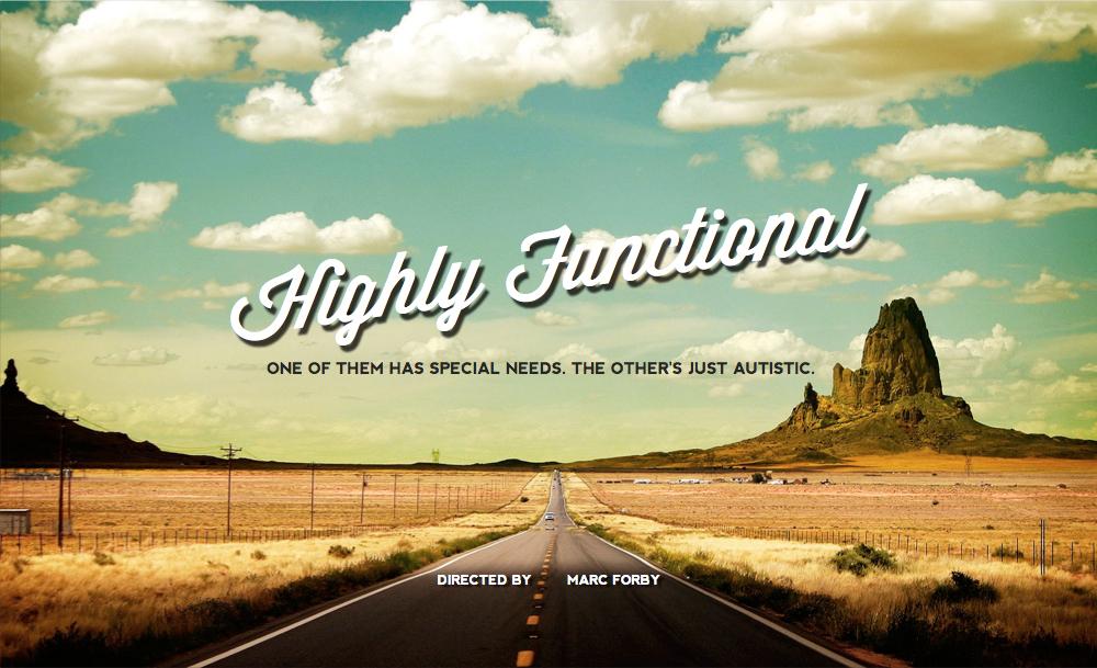 دانلود فیلم Highly Functional 2017