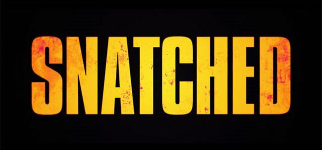 دانلود فیلم Snatched 2017