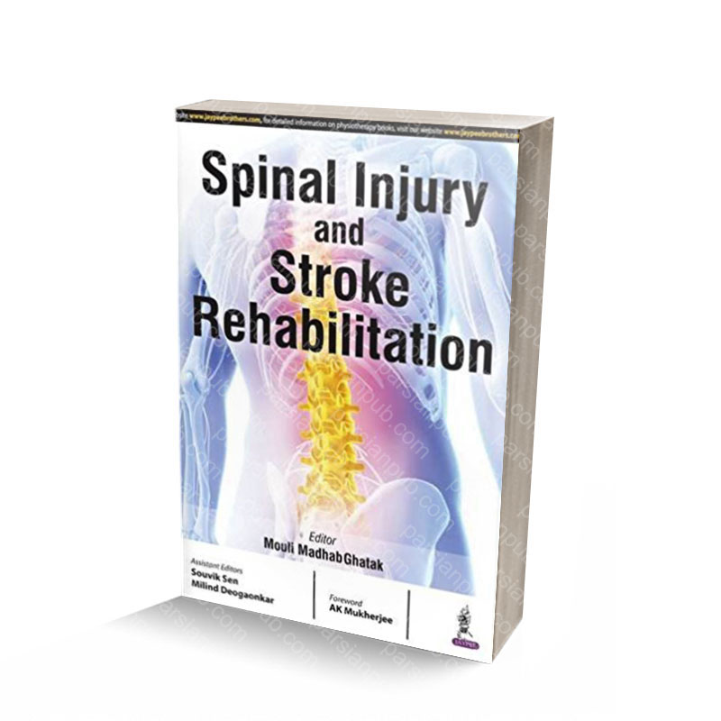 Spinal Injury and Stroke Rehabiliation Paperback – December 29, 2012