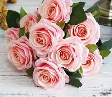 عکس گلهای بسیار زیبای جهان