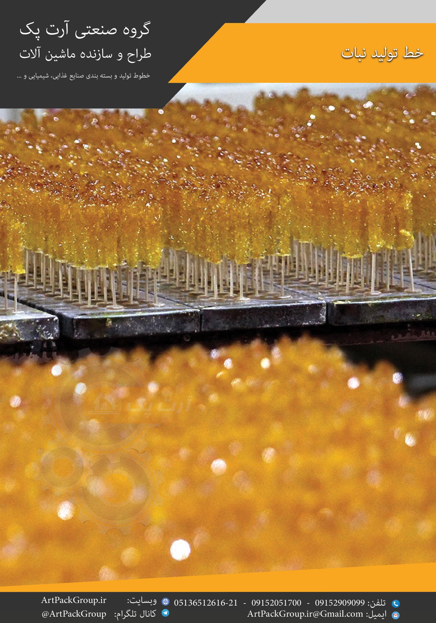 خط تولید نبات
