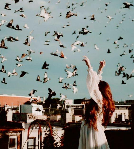 عکس پروفایل دختر از پشت سر با پرنده ها