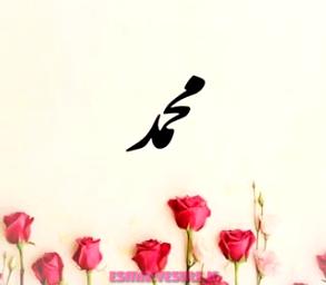زیباترین پروفایل اسم محمد