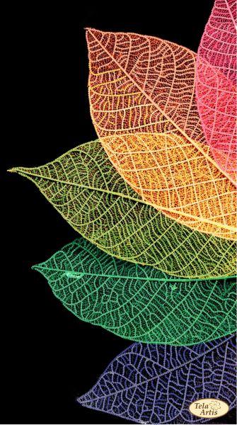 والپیپر فصل پاییز برای موبایل