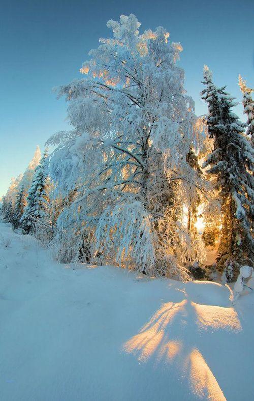 عکس پس زمینه زمستان فول اچ دی برای موبایل