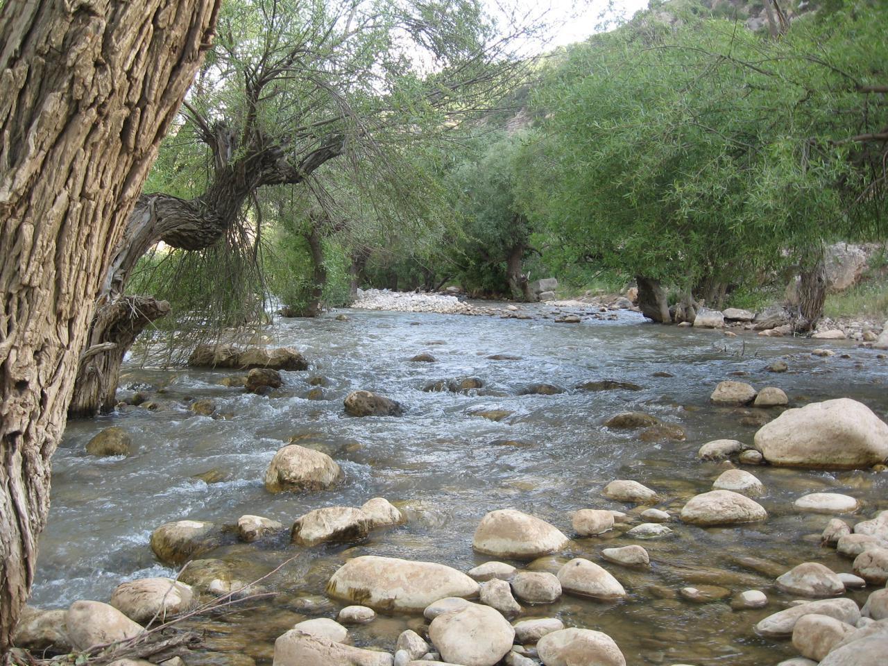رودخانه دره اسپر دورودلرستان