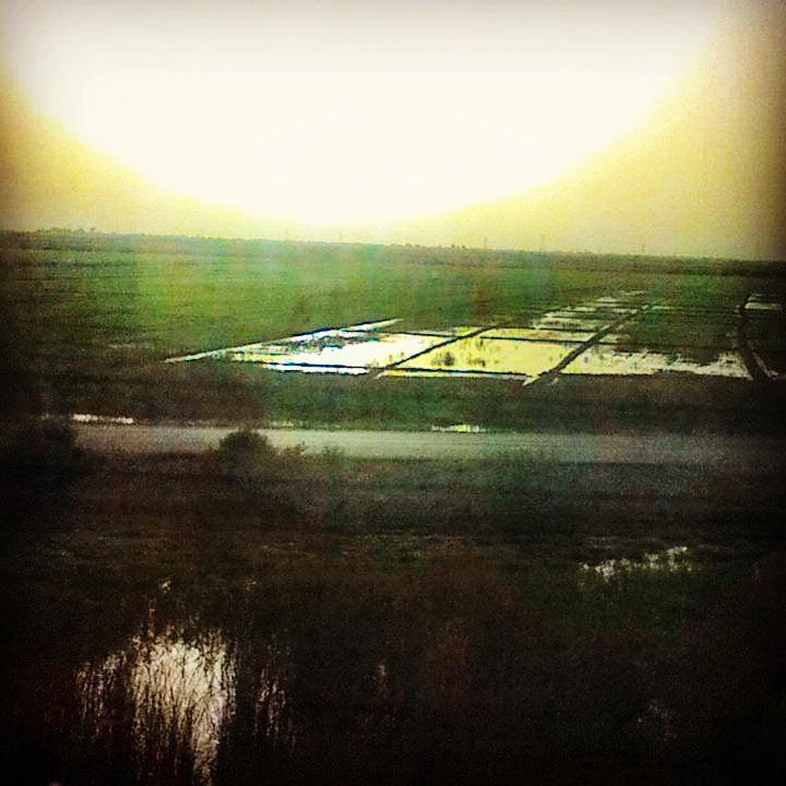 زمان حرکت قطار ایستگاه کارون اهواز پراکنده گویی های ۵ کیلومتری دوکوهه