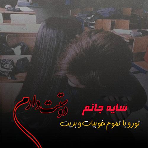 عکس نوشته اسم سایه برای پروفایل