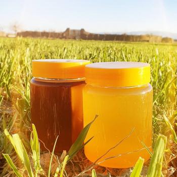 عسل طبیعی کوه های بزقوش