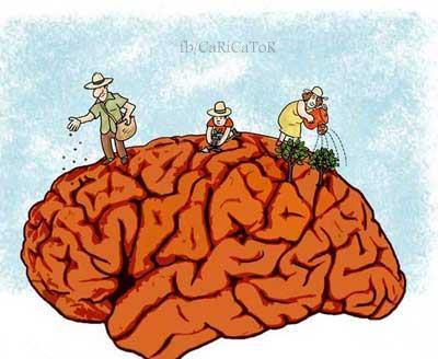 ذهن ما باغچه است