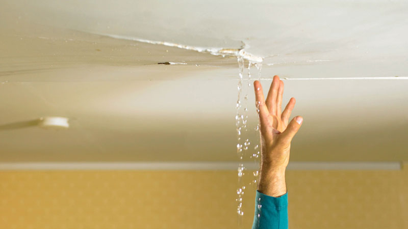 نشت نم و رطوبت در دیوار و سقف ساختمان