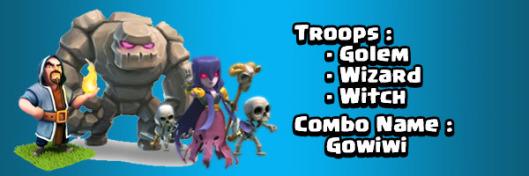 استراتژی حمله با GoWiWi
