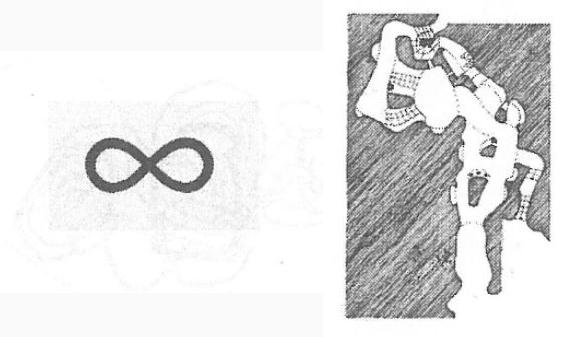 مسیرهای متعدد و متداخلی در میان فضای پروژه - مفهوم بینهایت در ریاضی
