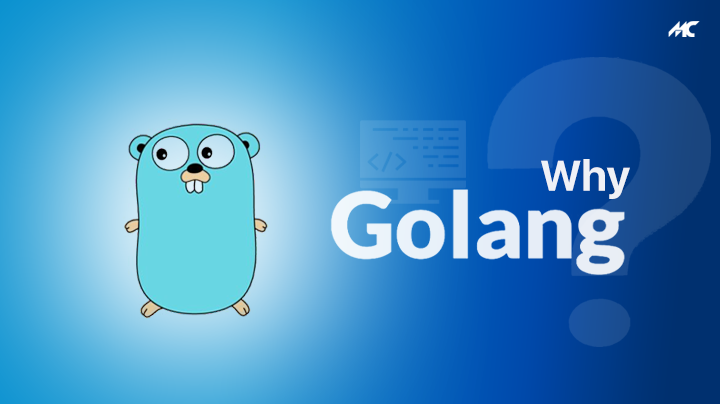 why golang