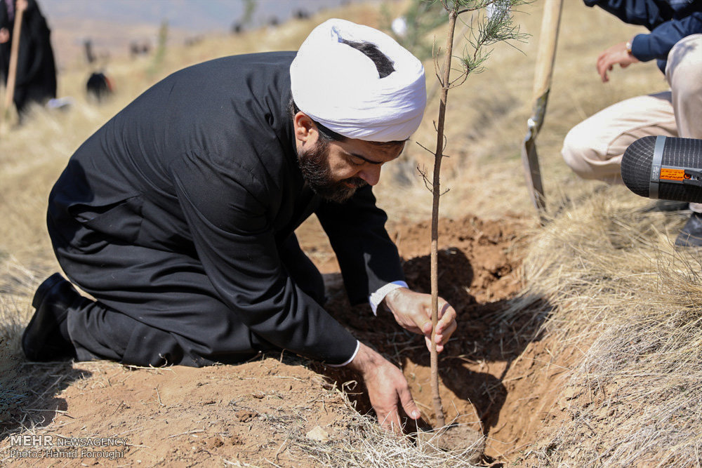 استاد شهاب مرادی در حال کاشت نهال