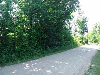 جاده روستایی گلرودبار