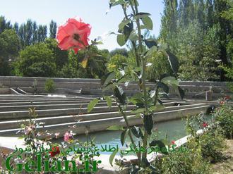 عکس های زیبا روستای گلیان/منبع:http://gelian.ir