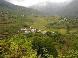 روستای پلام