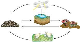 تصویر زیر چرخهٔ سادهای از نیتروژن را در طبیعت نشان میدهد. دربارهٔ این چرخه و نقش آن در زندگی، در کلاس گفتوگو کنید.