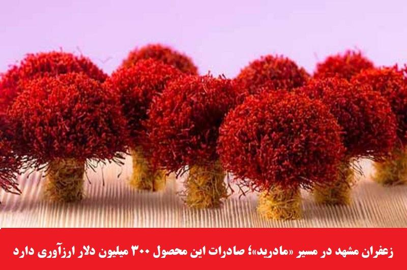 اقتصادی/ زعفران مشهد در مسیر «مادرید»؛ صادرات این محصول ۳۰۰ میلیون دلار ارزآوری دارد