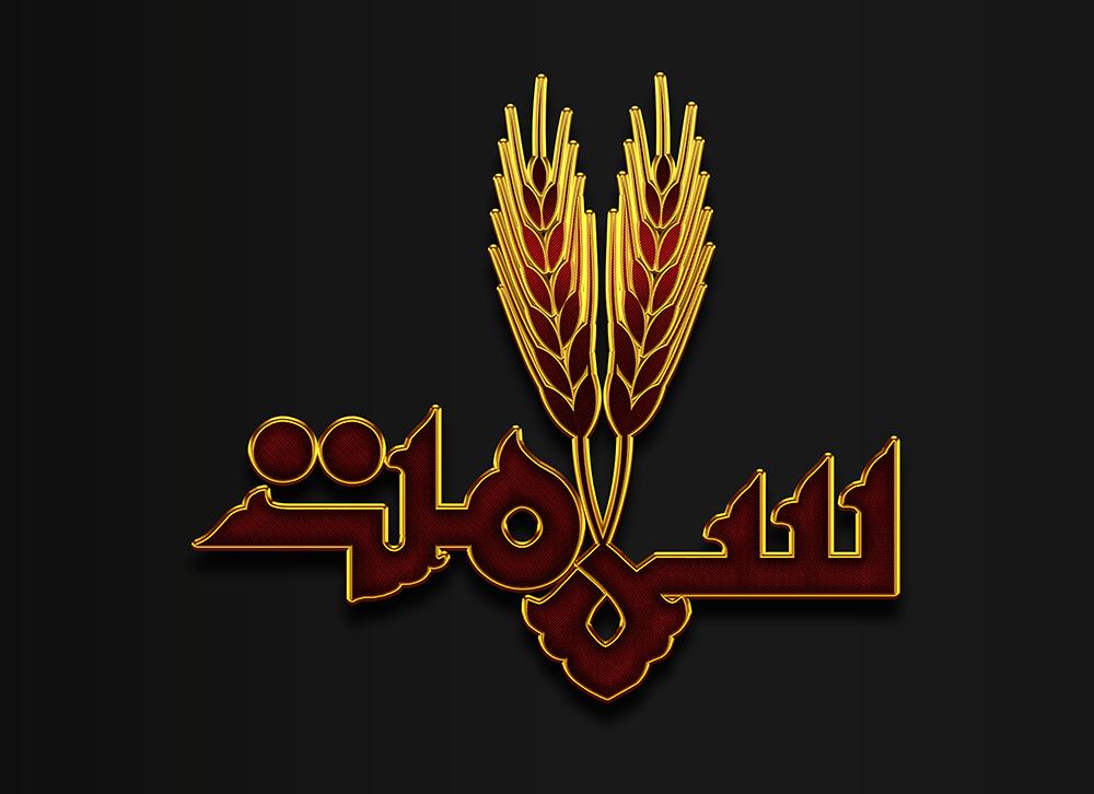 لوگو شرکت نان سلامت :: طراحی گرافیکلوگو شرکت نان سلامت