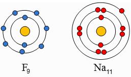 از واکنش فلز سدیم با گاز فلوئور سدیم فلوئورید به دست میآید. با توجه به نمادهای شیمیایی 9F و 11Na به پرسشهای زیر پاسخ دهید