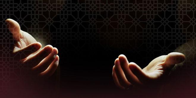 doa zohoor
