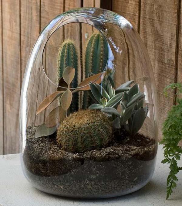 تراریوم :: گل خانه خانگیباغ شیشه ای