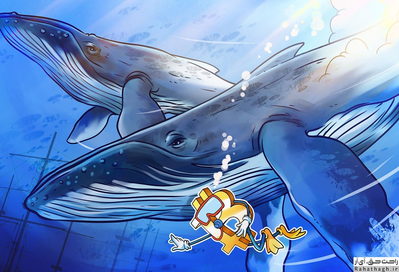 https://bayanbox.ir/view/7353338403342916623/whales-cryptocurrency.jpg