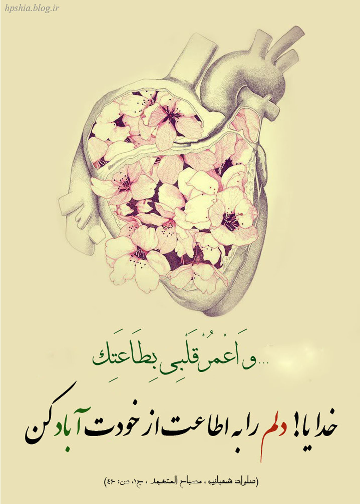 Image result for ?دل را آباد کن?‎