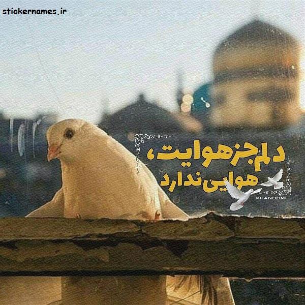 عکس پروفایل مشهد الرضا