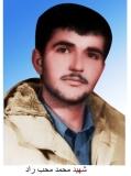 شهید محمدمحب راد